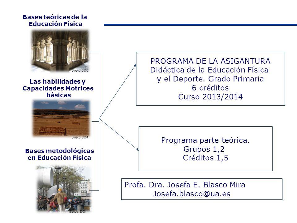 Bases teóricas de la Educación Física Las habilidades y Capacidades Motrices básicas Bases metodológicas en Educación Física PROGRAMA DE LA ASIGANTURA