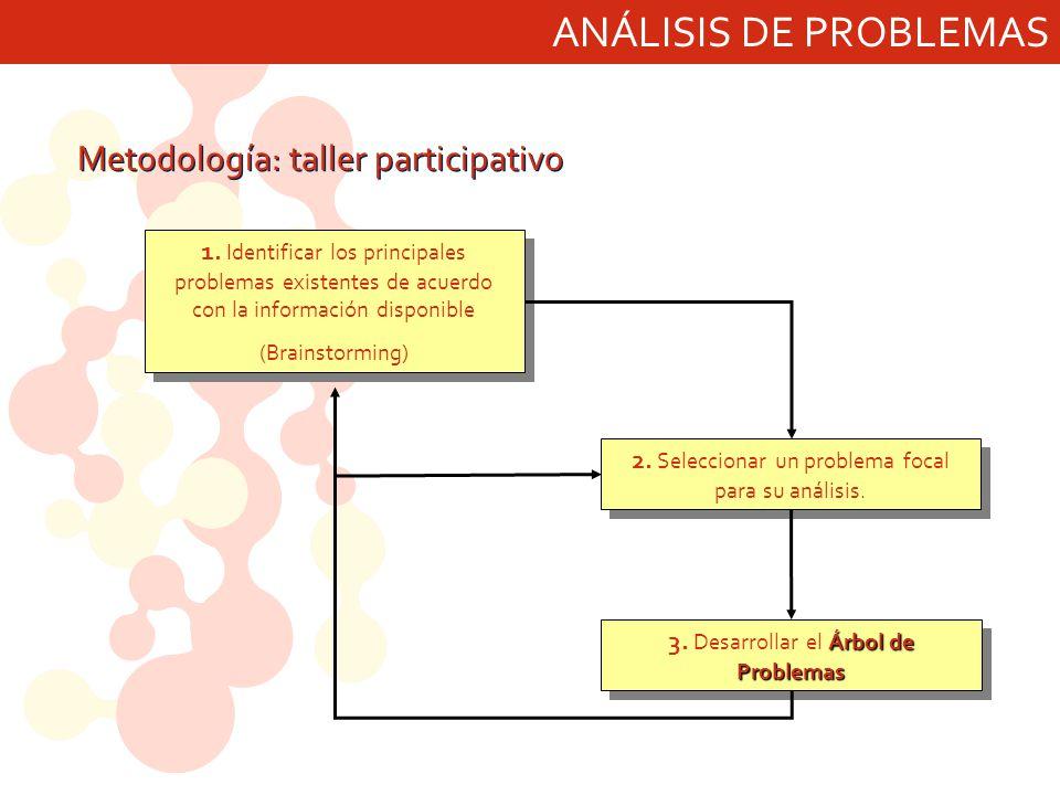 ANÁLISIS DE PROBLEMAS 1. Identificar los principales problemas existentes de acuerdo con la información disponible (Brainstorming) 1. Identificar los