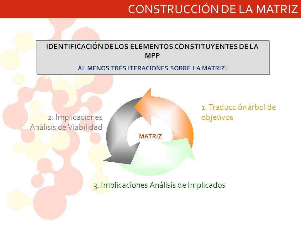 CONSTRUCCIÓN DE LA MATRIZ IDENTIFICACIÓN DE LOS ELEMENTOS CONSTITUYENTES DE LA MPP AL MENOS TRES ITERACIONES SOBRE LA MATRIZ: IDENTIFICACIÓN DE LOS EL