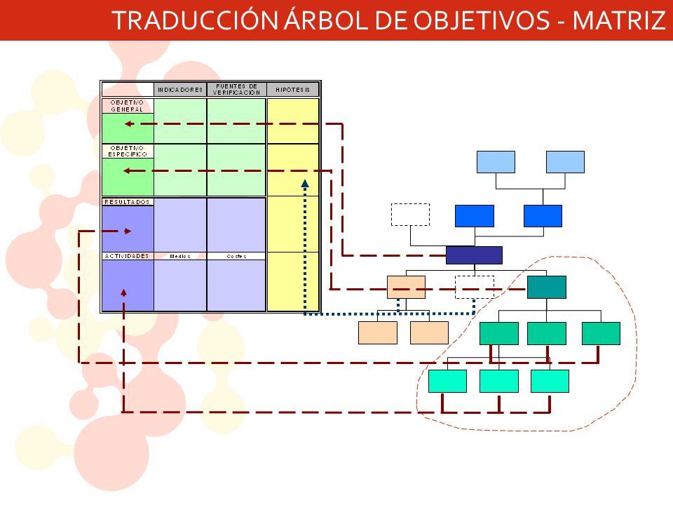 TRADUCCIÓN ÁRBOL DE OBJETIVOS - MATRIZ