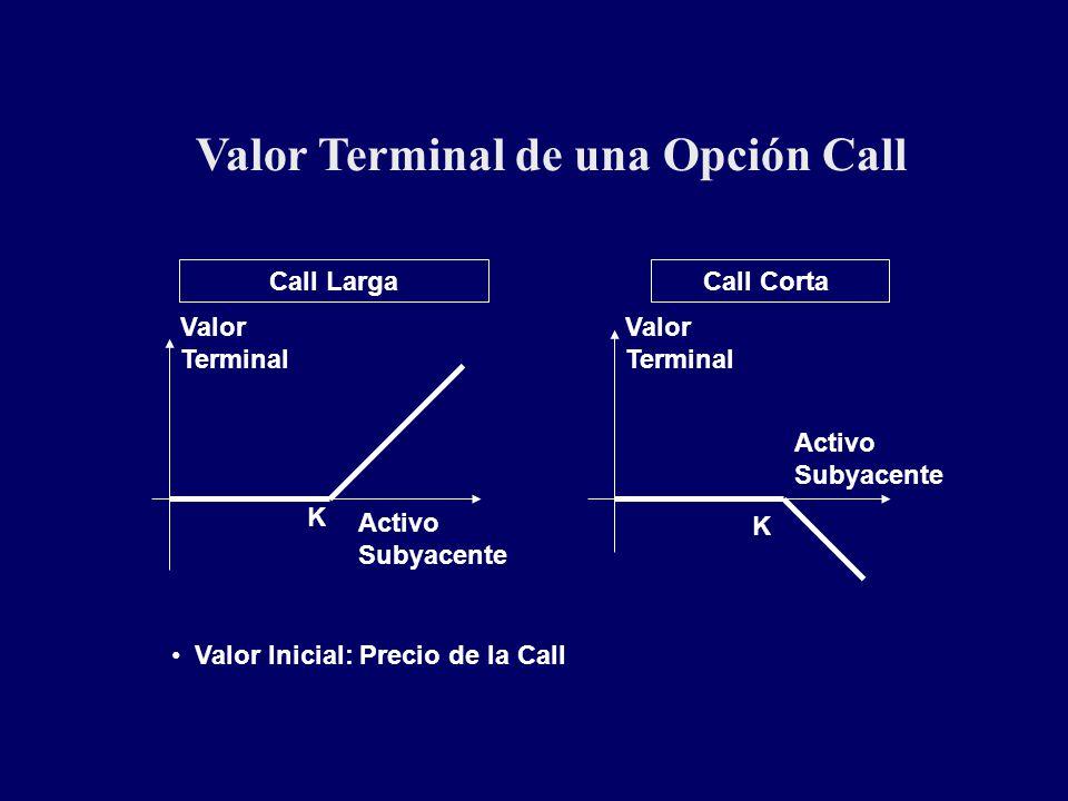Valor Terminal de una Opción Call Call LargaCall Corta K K Valor Terminal Valor Terminal Activo Subyacente Activo Subyacente Valor Inicial: Precio de