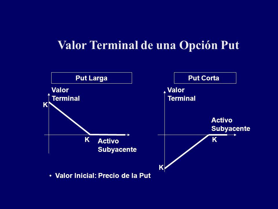 Valor Terminal de una Opción Put Put LargaPut Corta KK Valor Terminal Valor Terminal Activo Subyacente Activo Subyacente Valor Inicial: Precio de la P