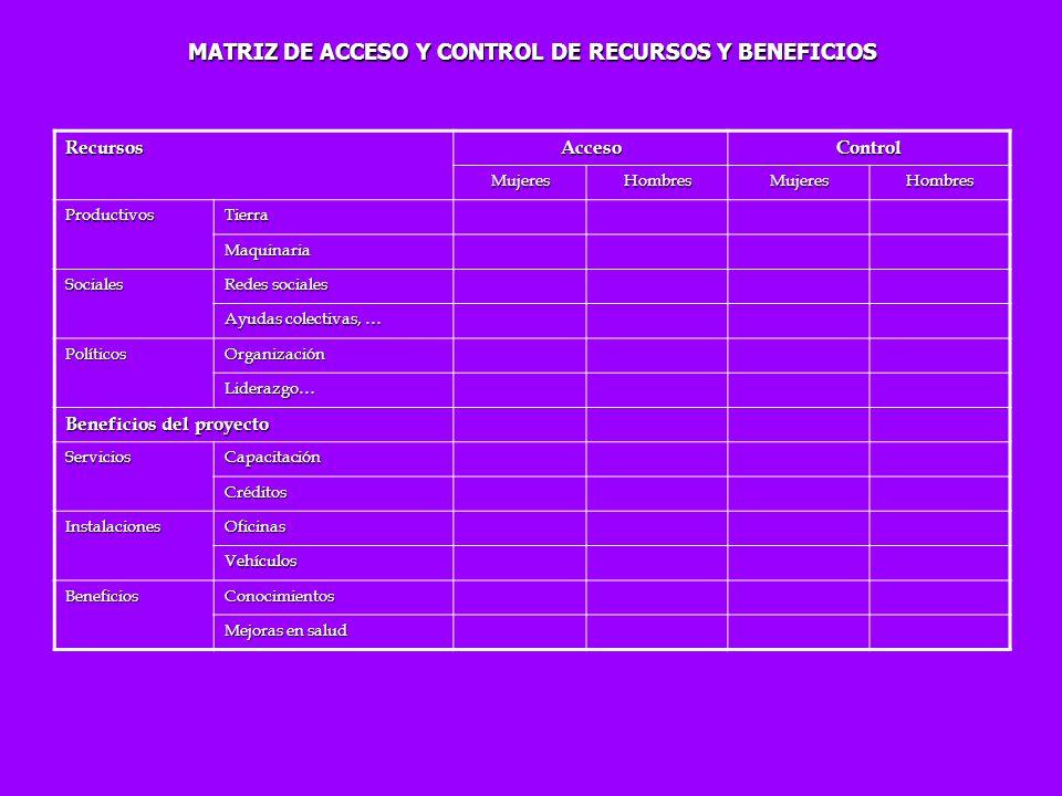 MATRIZ DE ACCESO Y CONTROL DE RECURSOS Y BENEFICIOS RecursosAccesoControl MujeresHombresMujeresHombres ProductivosTierra Maquinaria Sociales Redes soc