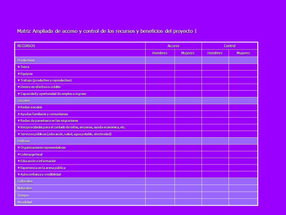Matriz Ampliada de acceso y control de los recursos y beneficios del proyecto I RECURSOSAccesoControl HombresMujeresHombresMujeres Productivos Tierra