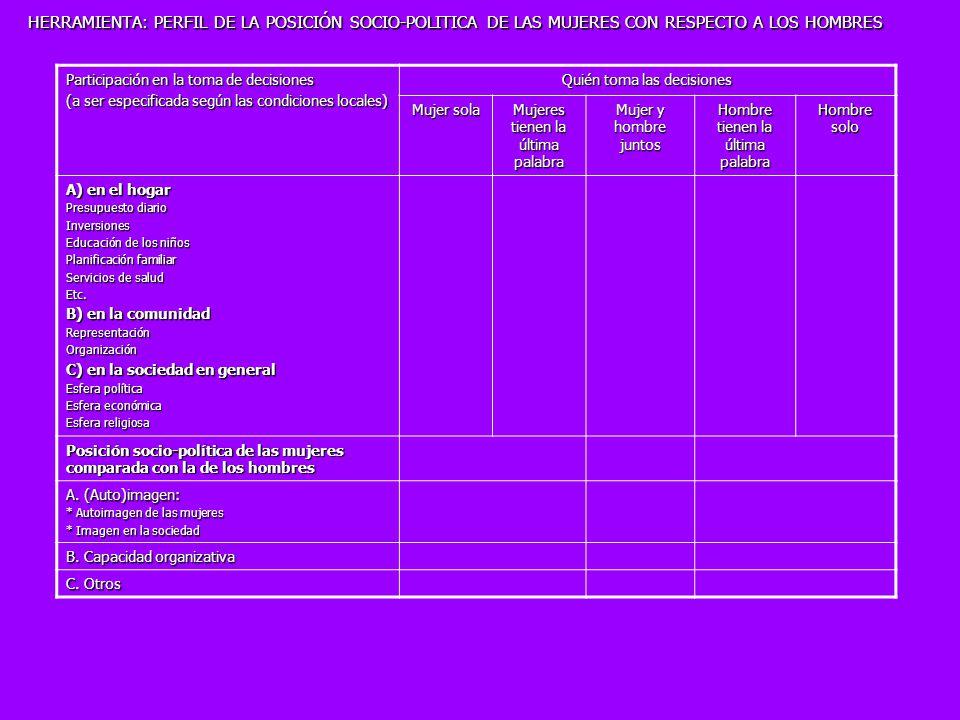 HERRAMIENTA: PERFIL DE LA POSICIÓN SOCIO-POLITICA DE LAS MUJERES CON RESPECTO A LOS HOMBRES Participación en la toma de decisiones (a ser especificada