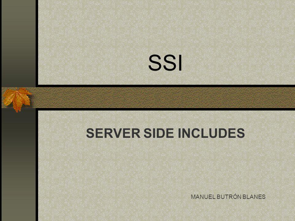 Índice Introducción.Usos. Qué necesito para programar en SSI.