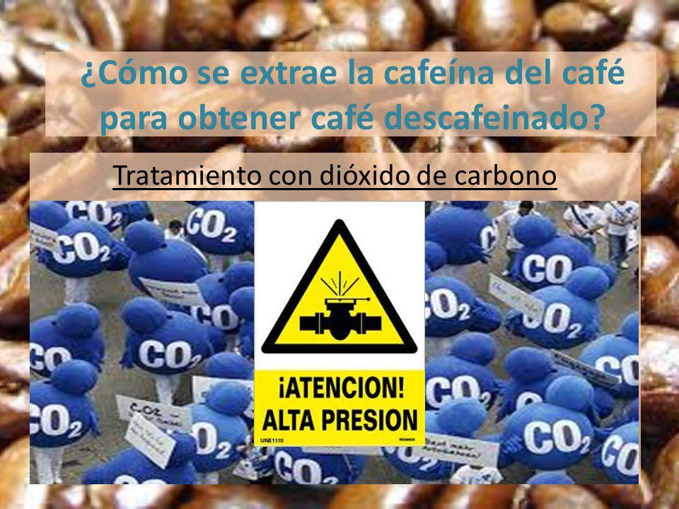 ¿Cómo se extrae la cafeína del café para obtener café descafeinado? Tratamiento con dióxido de carbono
