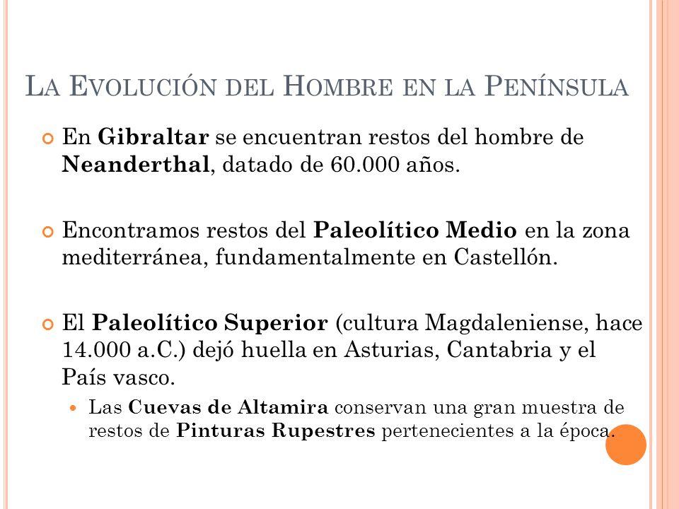 L A E VOLUCIÓN DEL H OMBRE EN LA P ENÍNSULA En Gibraltar se encuentran restos del hombre de Neanderthal, datado de 60.000 años. Encontramos restos del