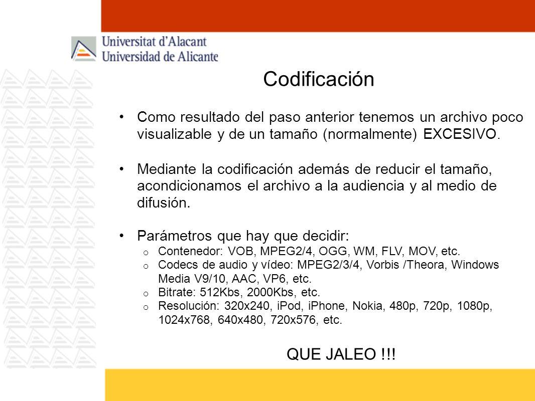 Codificación Como resultado del paso anterior tenemos un archivo poco visualizable y de un tamaño (normalmente) EXCESIVO.