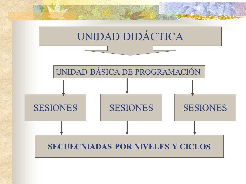 UNIDAD DIDÁCTICA UNIDAD BÁSICA DE PROGRAMACIÓN SESIONES SECUECNIADAS POR NIVELES Y CICLOS