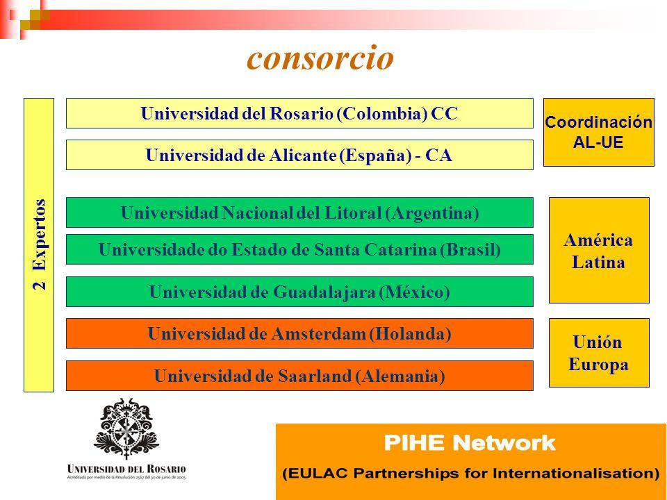 consorcio Universidad del Rosario (Colombia) CC Universidad de Alicante (España) - CA Universidad de Saarland (Alemania) Universidade do Estado de San