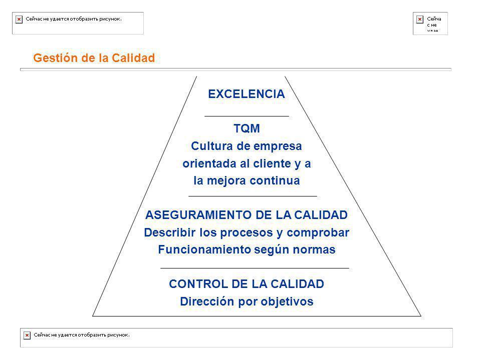 Gestión de la Calidad EXCELENCIA TQM Cultura de empresa orientada al cliente y a la mejora continua ASEGURAMIENTO DE LA CALIDAD Describir los procesos