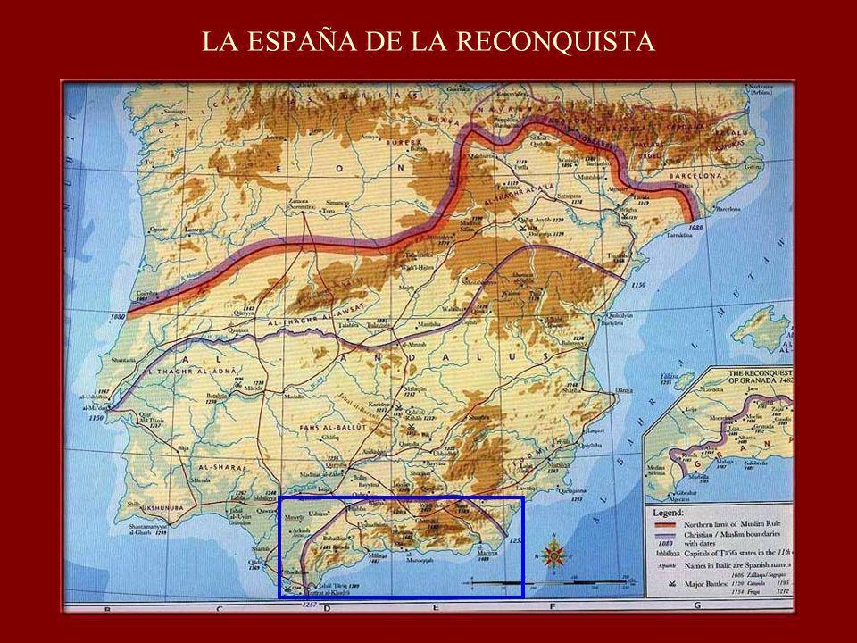 DERECHO MEDIEVAL: DISPERSION NORMATIVA Y APLICACIÓN DEL DERECHO COMÚN Magdalena Martínez Almira Historia del Derecho Universidad de Alicante