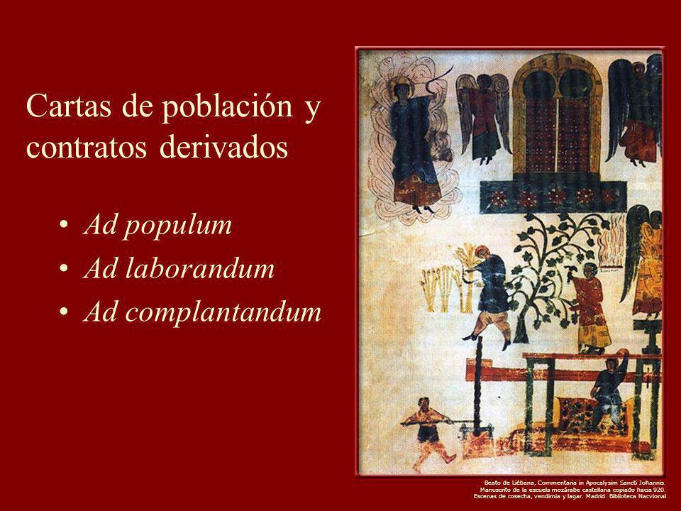 Cartas de población y contratos derivados Ad populum Ad laborandum Ad complantandum Beato de Liébana, Commentaria in Apocalysim Sancti Johannis.