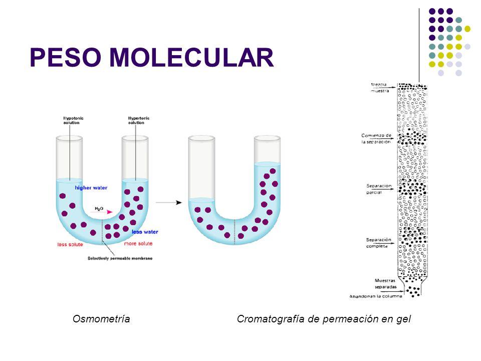 PESO MOLECULAR Osmometría Cromatografía de permeación en gel