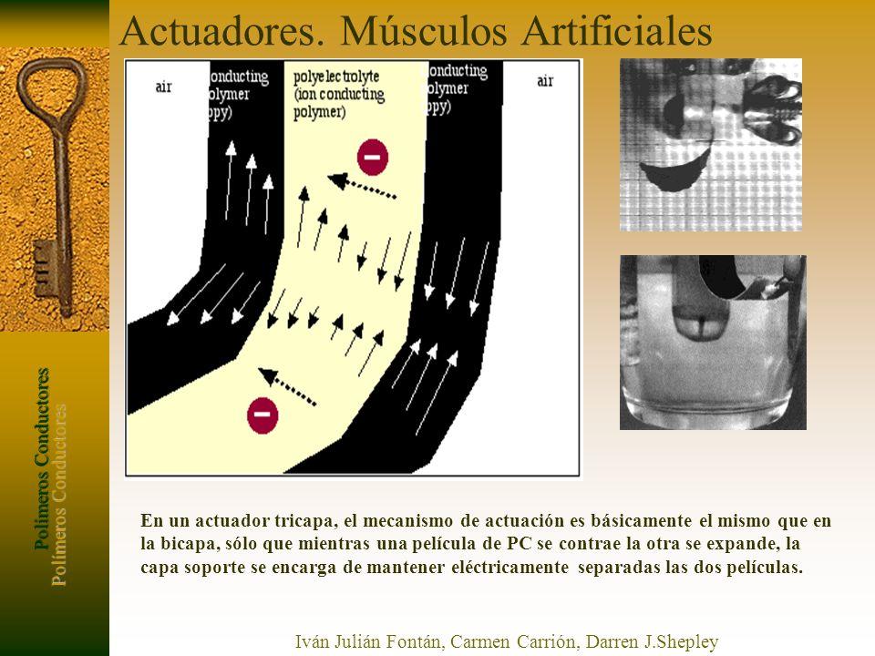 Polímeros Conductores Iván Julián Fontán, Carmen Carrión, Darren J.Shepley En un actuador tricapa, el mecanismo de actuación es básicamente el mismo q