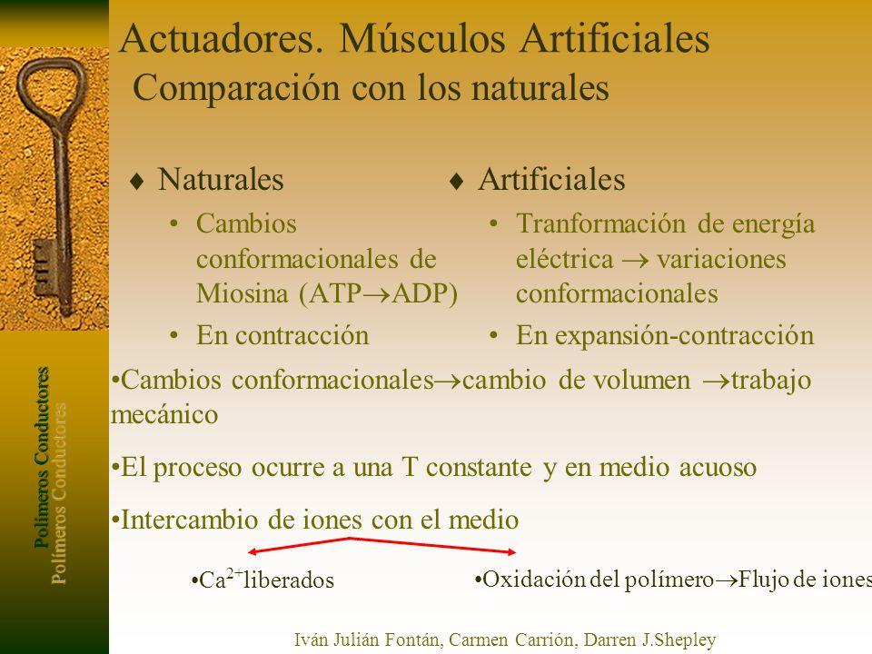 Polímeros Conductores Iván Julián Fontán, Carmen Carrión, Darren J.Shepley Actuadores. Músculos Artificiales Naturales Cambios conformacionales de Mio