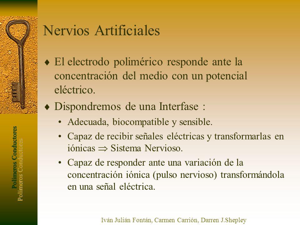 Polímeros Conductores Iván Julián Fontán, Carmen Carrión, Darren J.Shepley Nervios Artificiales El electrodo polimérico responde ante la concentración