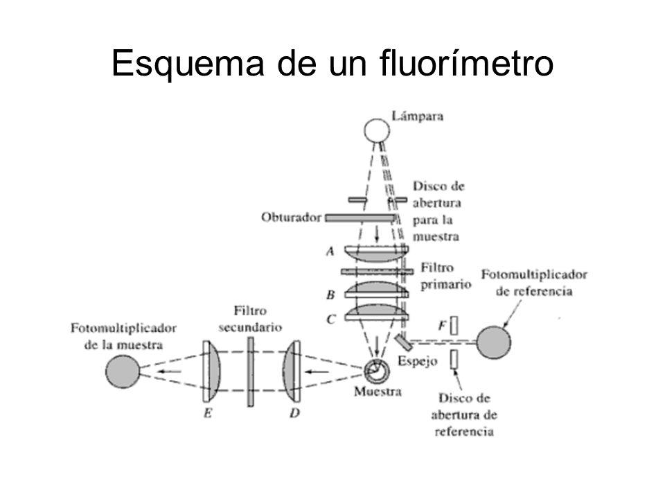 Esquema de un fluorímetro