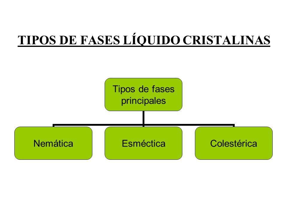 TIPOS DE FASES LÍQUIDO CRISTALINAS Tipos de fases principales NemáticaEsmécticaColestérica