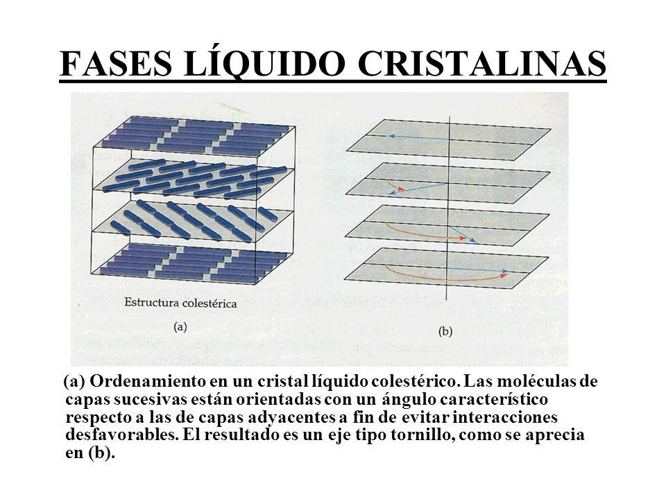 FASES LÍQUIDO CRISTALINAS (a) Ordenamiento en un cristal líquido colestérico. Las moléculas de capas sucesivas están orientadas con un ángulo caracter