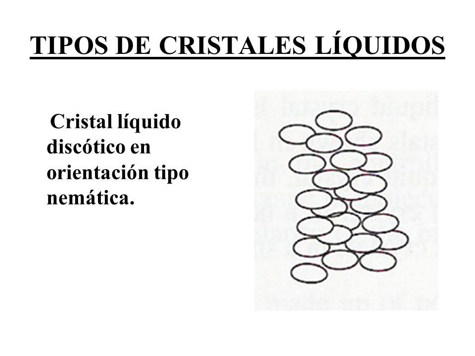 TIPOS DE CRISTALES LÍQUIDOS (A) Esquema de una bicapa de fosfolípido en agua.