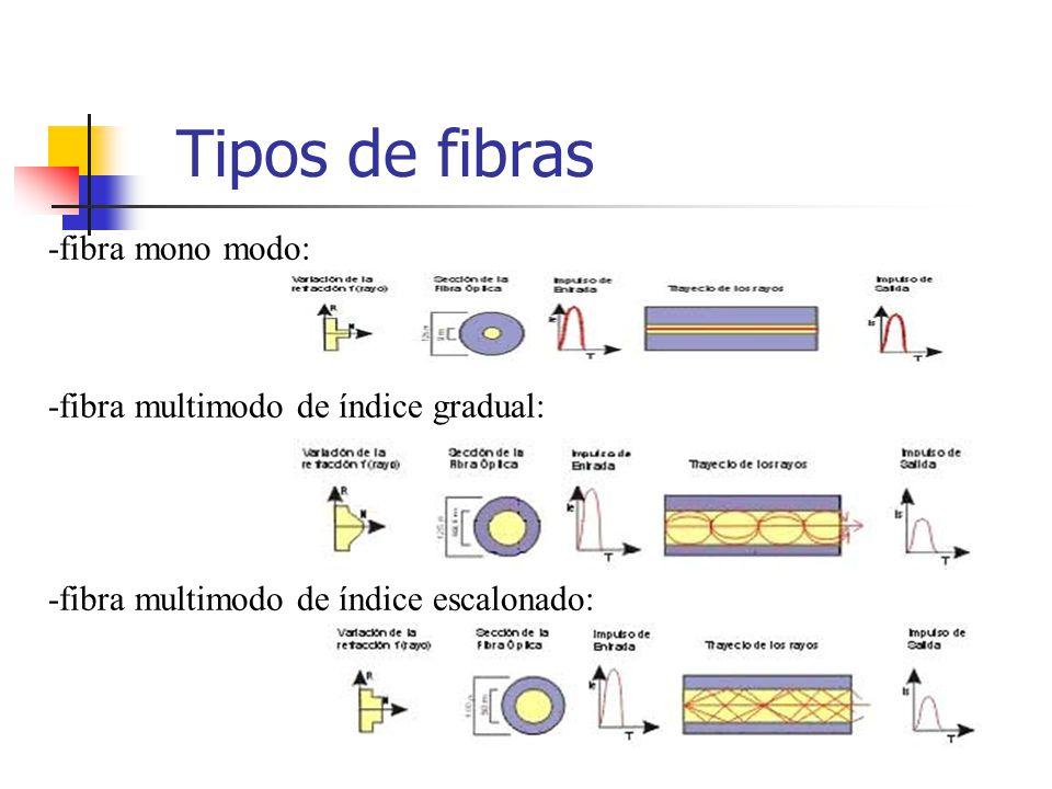 Componentes Núcleo Funda óptica Revestimiento de protección