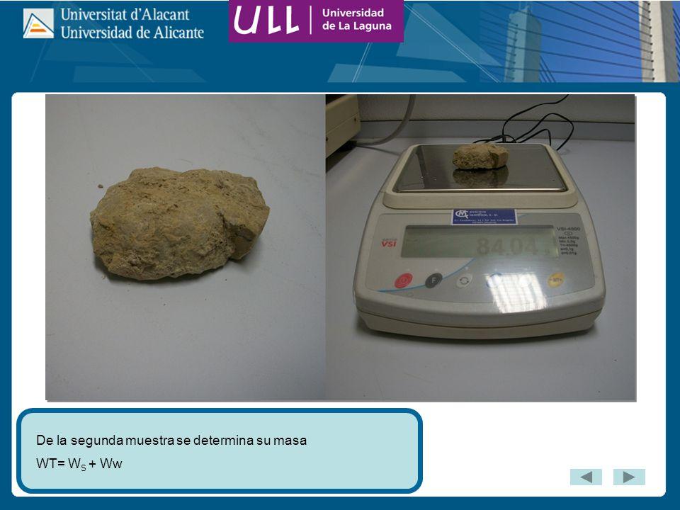 De la segunda muestra se determina su masa WT= W S + Ww