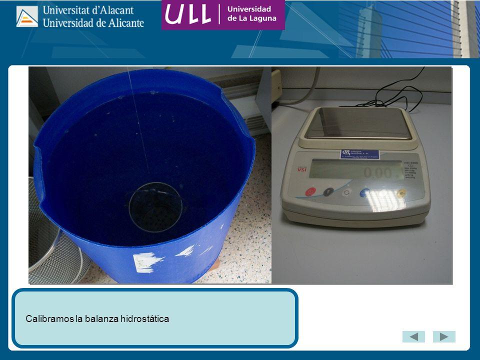 Calibramos la balanza hidrostática