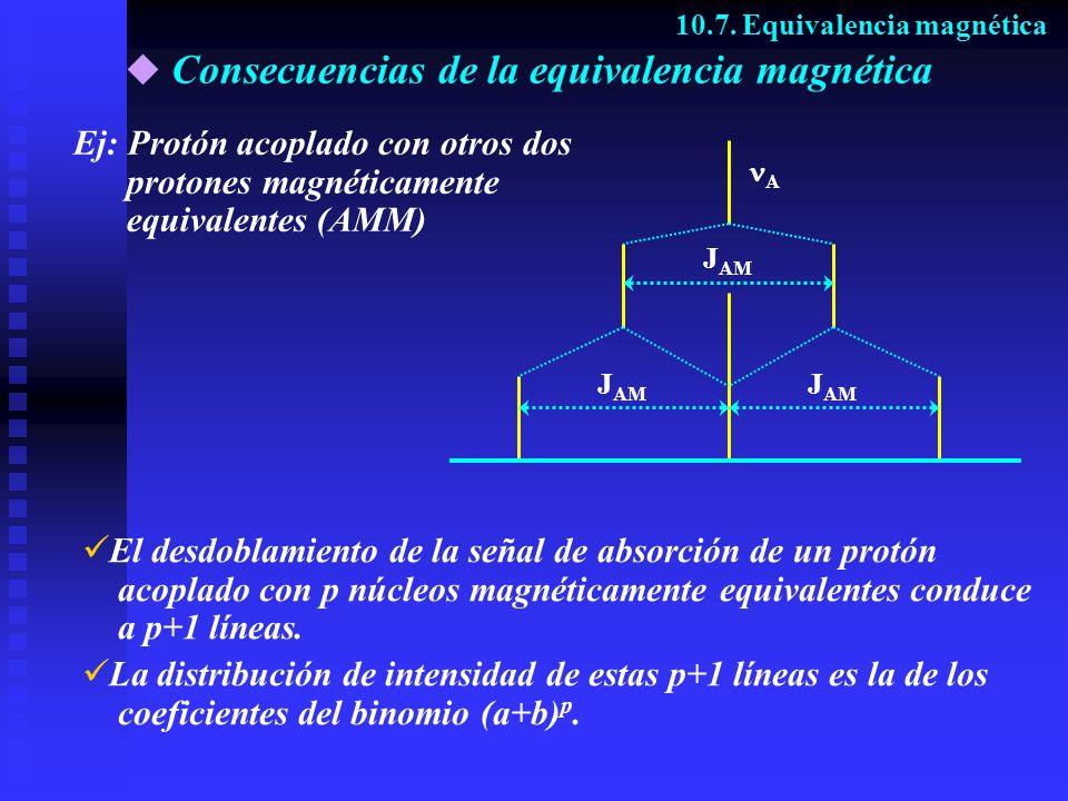 Consecuencias de la equivalencia magnética 10.7. Equivalencia magnética Ej: Protón acoplado con otros dos protones magnéticamente equivalentes (AMM) A