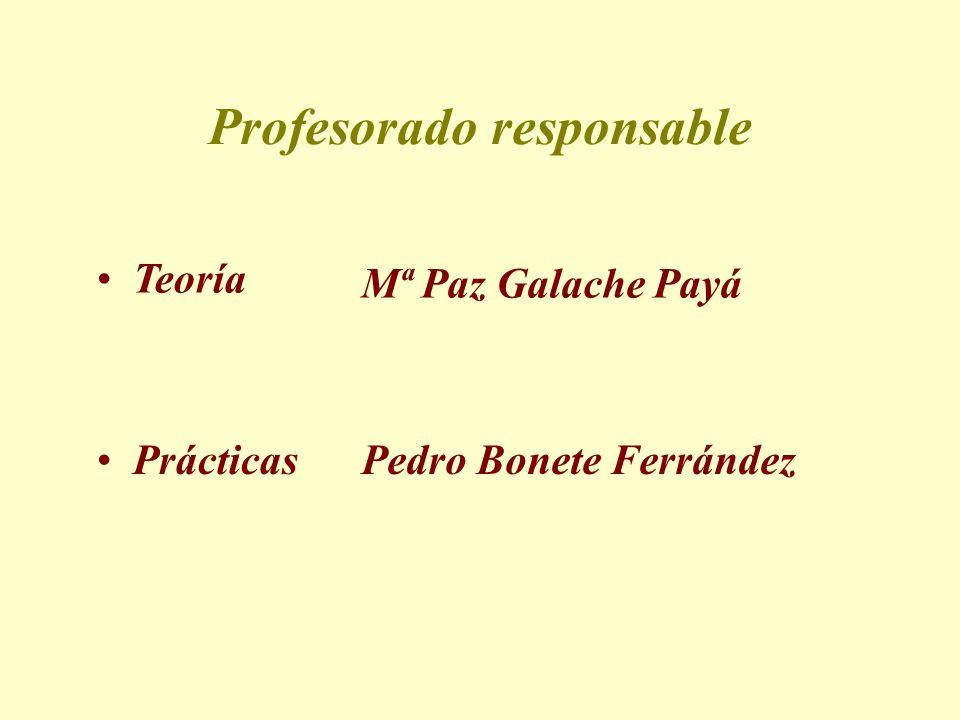 Profesorado responsable Prácticas Pedro Bonete Ferrández Mª Paz Galache Payá Teoría