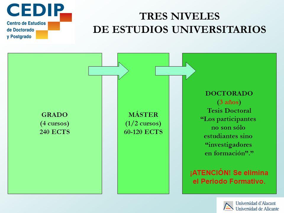 GRADO (4 cursos) 240 ECTS MÁSTER (1/2 cursos) 60-120 ECTS DOCTORADO (3 años) Tesis Doctoral Los participantes no son sólo estudiantes sino investigado