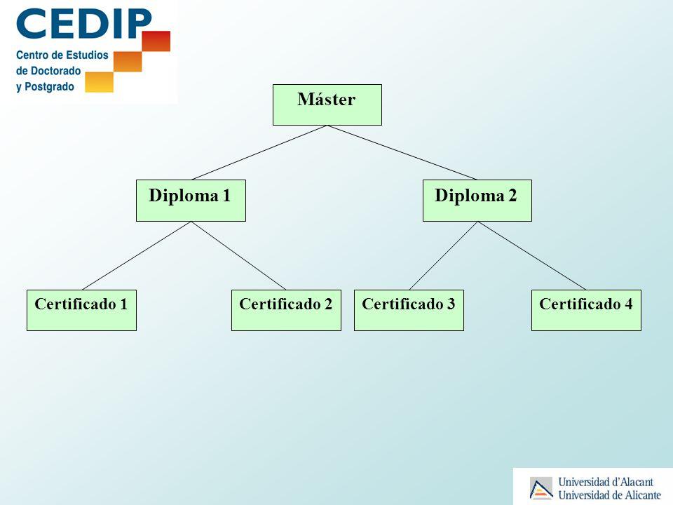 Máster Diploma 1Diploma 2 Certificado 1Certificado 2Certificado 4Certificado 3