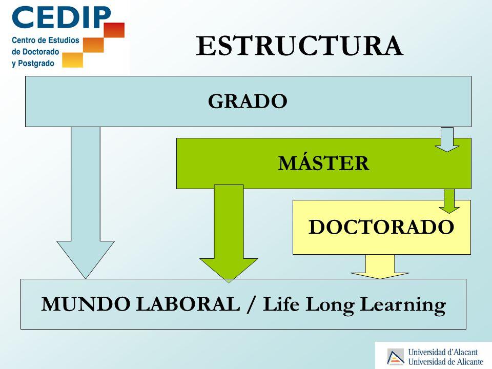 Art.4. ORGANIZACIÓN DE LA FORMACIÓN DOCTORAL.