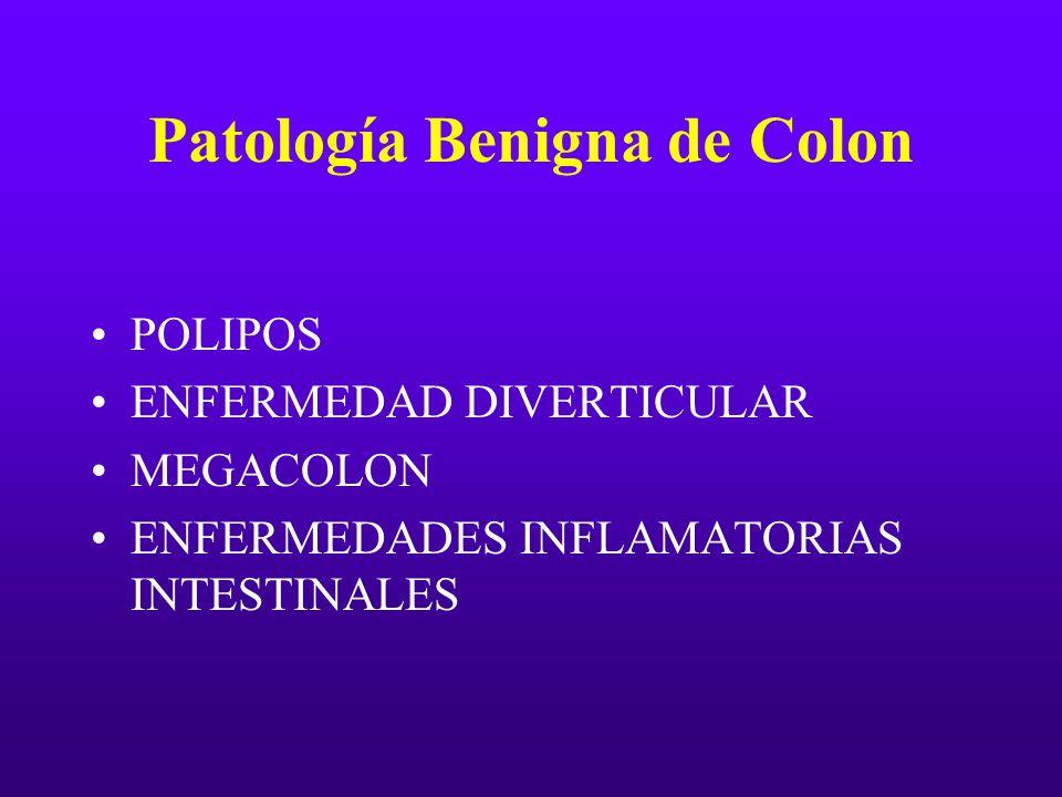 Patología Benigna de Colon POLIPOS ENFERMEDAD DIVERTICULAR MEGACOLON ENFERMEDADES INFLAMATORIAS INTESTINALES
