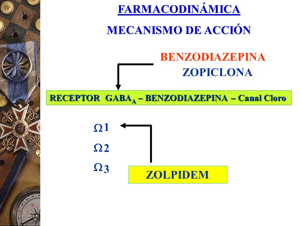 BDZ GABA CANAL CLORURO Cl - MODELO SIMPLIFICADO DEL RECEPTOR BENZODIACEPINICO BERGMAN SA; 1996 Doble capa lipídica