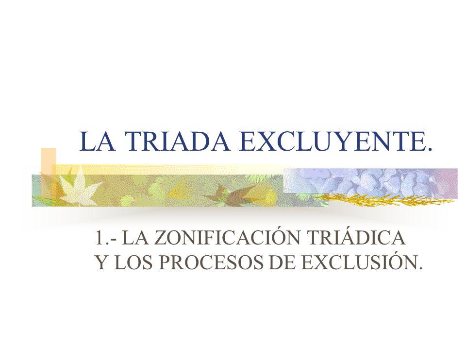 LA TRIADA EXCLUYENTE. 1.- LA ZONIFICACIÓN TRIÁDICA Y LOS PROCESOS DE EXCLUSIÓN.