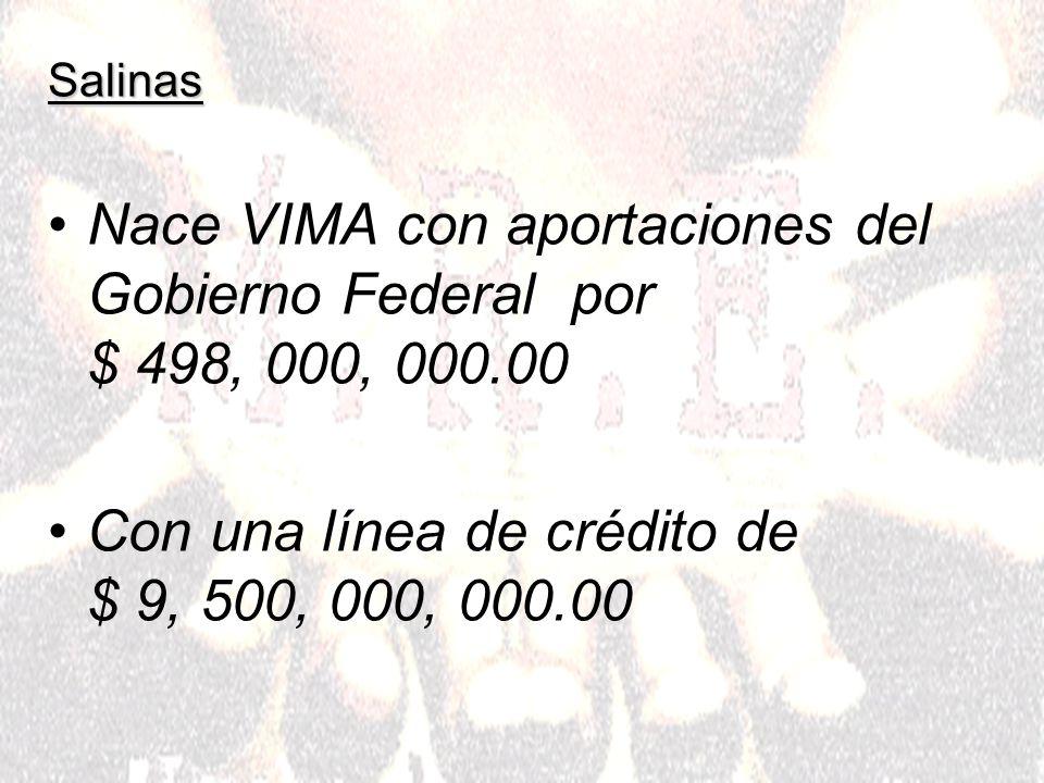 Salinas Nace VIMA con aportaciones del Gobierno Federal por $ 498, 000, 000.00 Con una línea de crédito de $ 9, 500, 000, 000.00