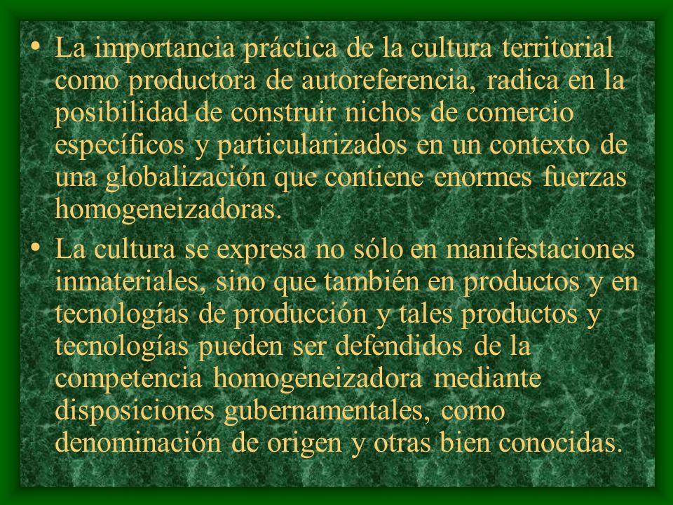 Interesa conocer su capacidad para producir una autoreferencia, es decir, la capacidad para producir la identificación de la sociedad con su propio territorio, o, puesto de otro modo, la capacidad de esa cultura para introducir códigos referenciales territoriales en los mensajes de autoidentificación.