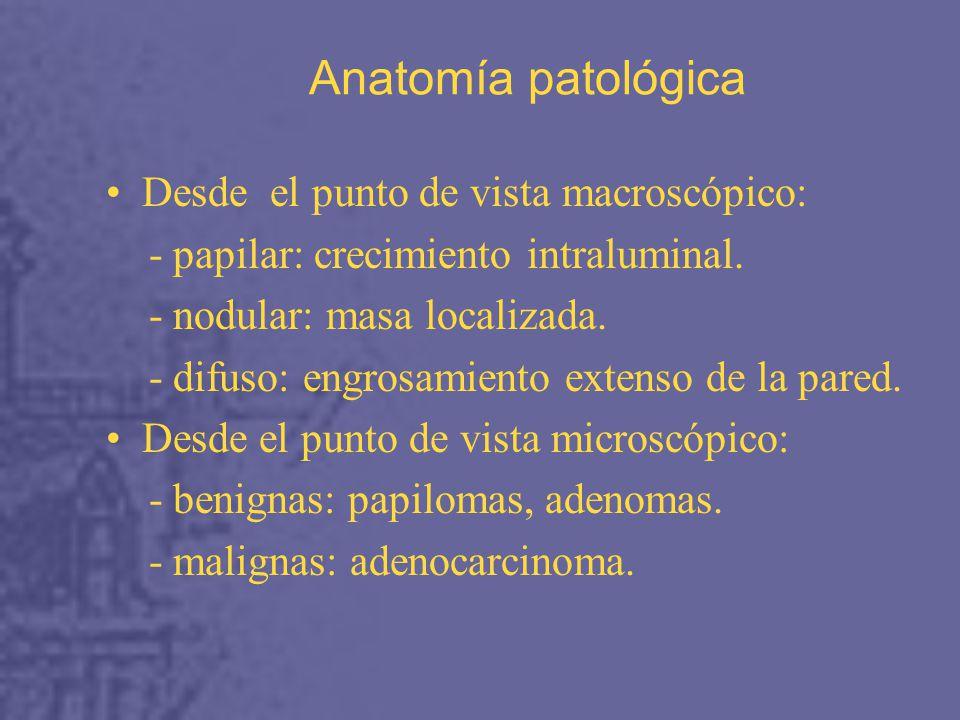Anatomía patológica Desde el punto de vista macroscópico: - papilar: crecimiento intraluminal.