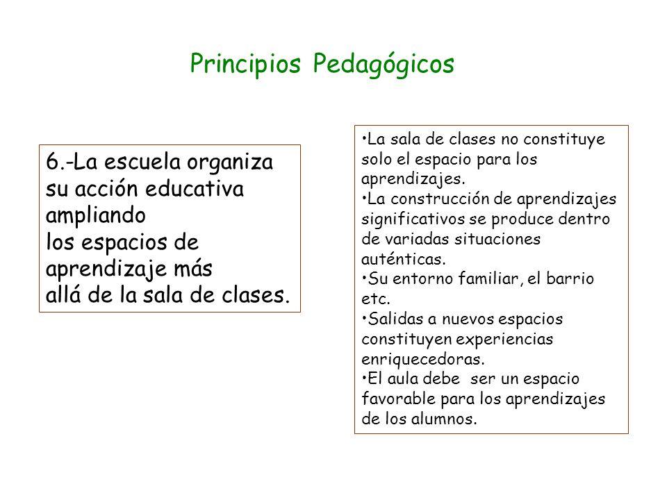 Principios Pedagógicos 5.-Las actividades que se proponen a los alumnos favorecen el trabajo colaborativo. Las principales características que definen