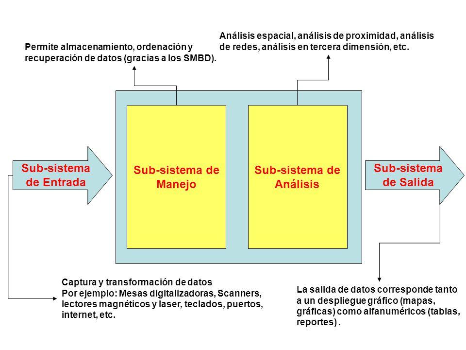 Sub-sistema de Manejo Sub-sistema de Análisis Sub-sistema de Entrada Sub-sistema de Salida Captura y transformación de datos Por ejemplo: Mesas digita