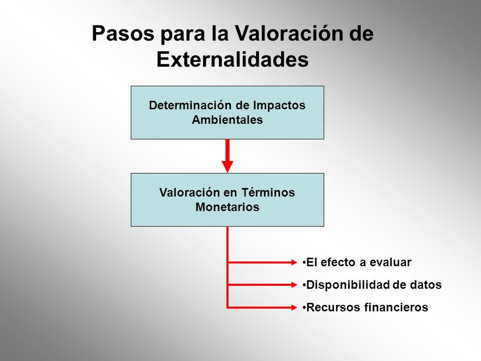 Determinación de Impactos Ambientales Valoración en Términos Monetarios El efecto a evaluar Disponibilidad de datos Recursos financieros Pasos para la