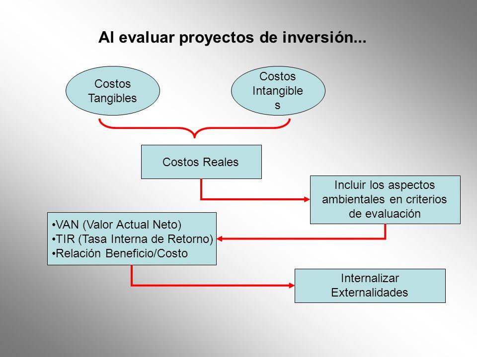 Al evaluar proyectos de inversión... Costos Tangibles Costos Intangible s Costos Reales Incluir los aspectos ambientales en criterios de evaluación VA