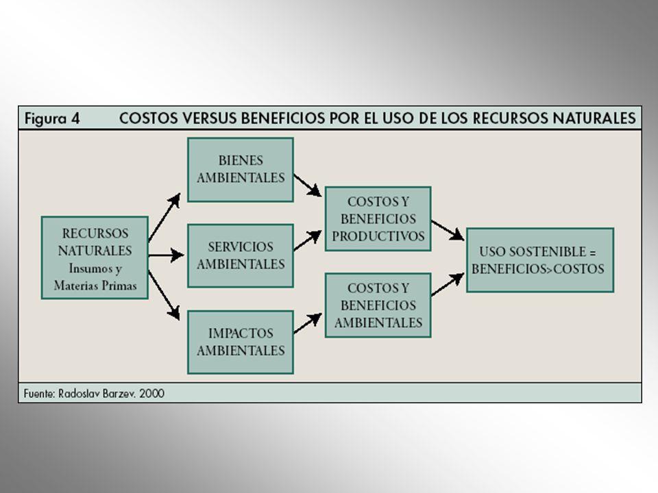 Métodos de Valoración Metodos que utilizan precios de mercado Metodos basados en valores de mercados sustitutos Metodos basados en desembolsos potenciales o la disposición a pagar