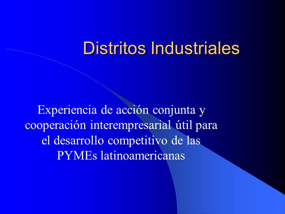 Distritos Industriales Experiencia de acción conjunta y cooperación interempresarial útil para el desarrollo competitivo de las PYMEs latinoamericanas