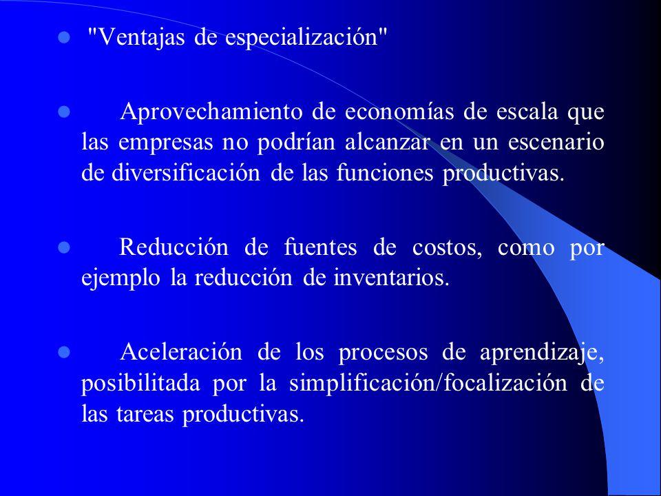 Dichas ventajas son complementadas y enriquecidas cuando los distritos industriales presentan las siguientes ventajas competitivas: