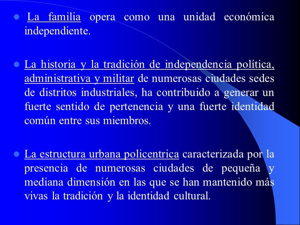 2.1 Los elementos funcionales de los distritos industriales en Italia 2.1 Los elementos funcionales de los distritos industriales en Italia Dini (1997