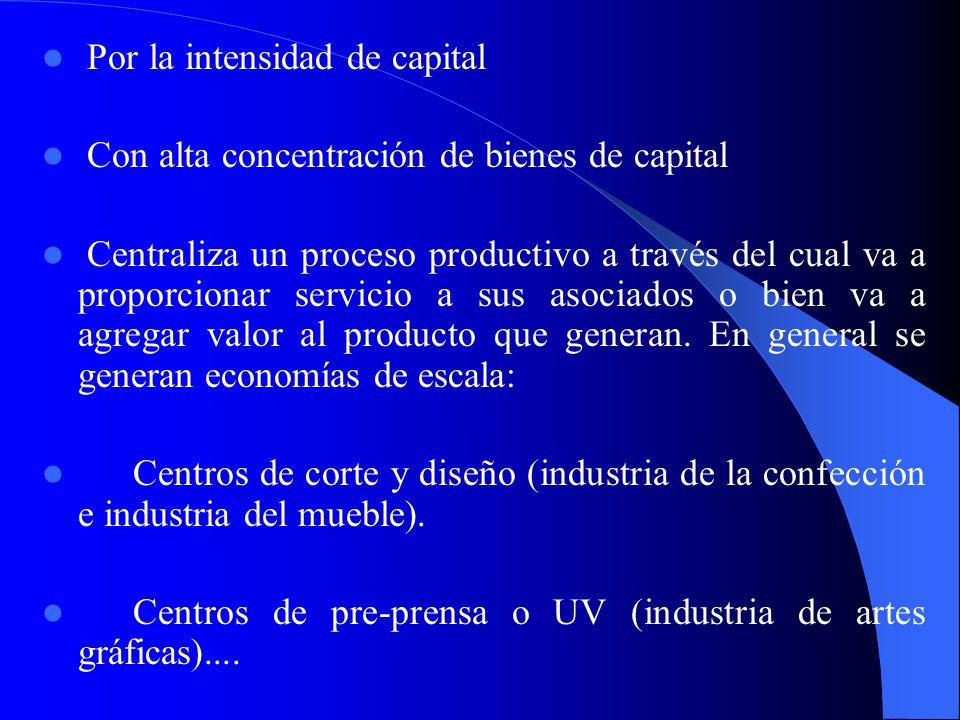 Algunos ejemplos de redes verticales podrían ser los siguientes: El desarrollo de un agrupamiento orientado a la producción de auto partes tales como