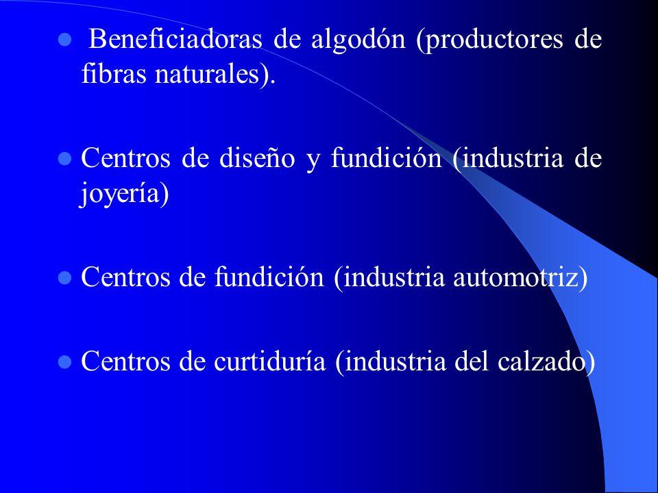 Por la intensidad de capital Con alta concentración de bienes de capital Centraliza un proceso productivo a través del cual va a proporcionar servicio